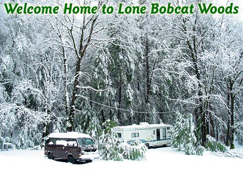 120310_snow_lbw_500.jpg