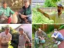 Suburban Backyard Gardens: Cultivating Abundance