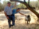 Innovation Bears Fruit for Family Farm (162)
