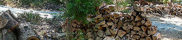 firewood_600