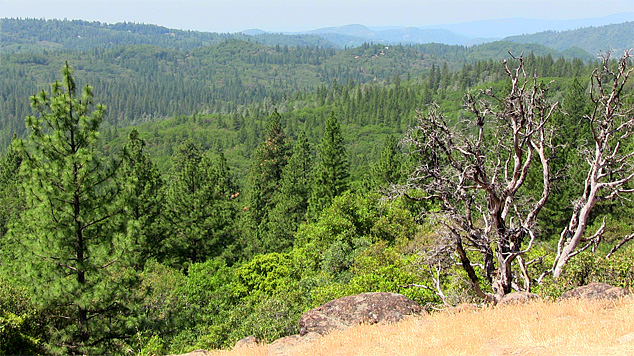 coyote_overlook_photo