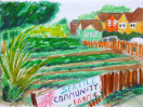 Seattle Community Farm – Fresh Produce for the Neighborhood