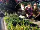 Haultain Commons Garden Seeds Neighborliness
