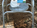 Poo to Peaches – composting toilet book