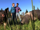 The Animals are Allies at Inspiration Farm (294)