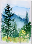 dunsmuir_postcard_911v