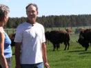 Pine Mountain Ranch — Where the Buffalo Roam (334)